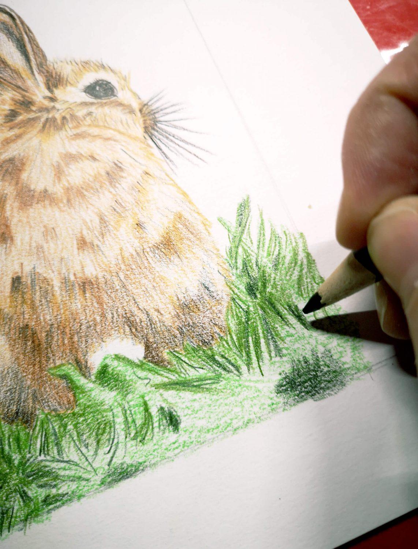Braunes Kaninchen malen Work in Progress 1