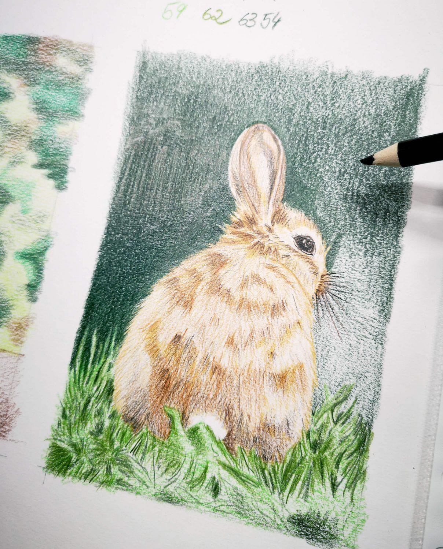 Braunes Kaninchen malen Work in Progress 2