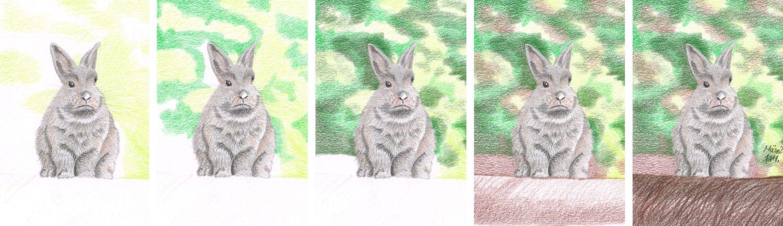 Graues Kaninchen zeichnen: Hintergrund malen