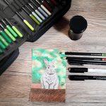 Kaninchen zeichnen mit Buntstiften