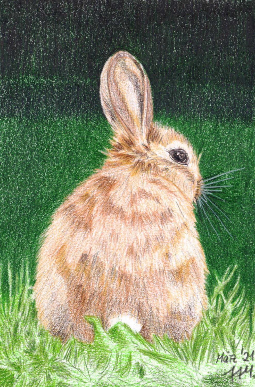 Braunes Kaninchen malen fertige Buntstiftkolorierung