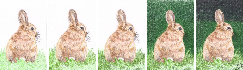 Braunes Kaninchen malen Hintergrund Buntstiftkolorierung