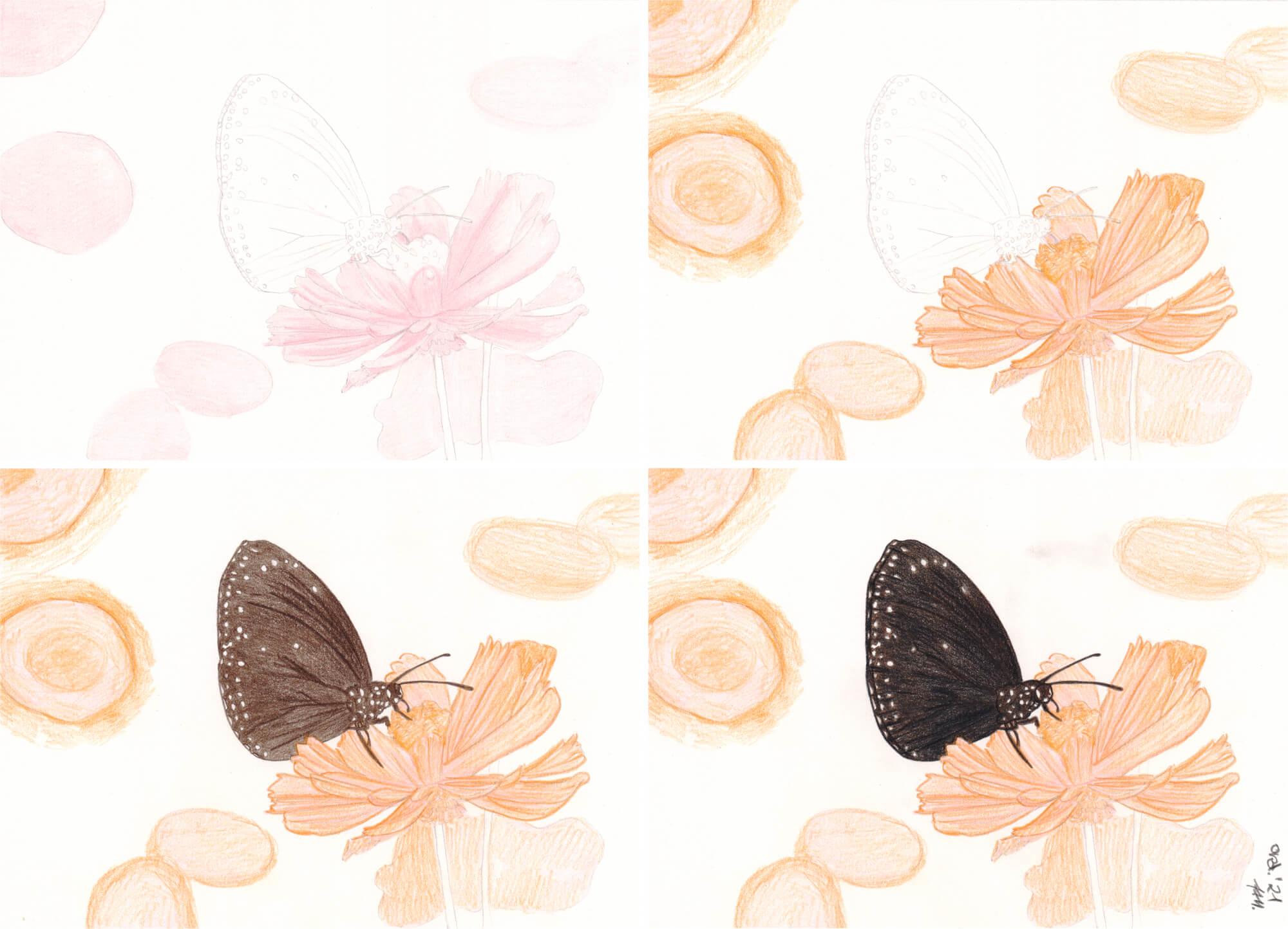 Schmetterling zeichnen mit Mitsubishi uni No. 888 Buntstiften